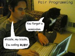 pair programming with cat